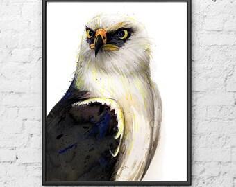 Eagle watercolor painting, watercolor print, wild life, animal art, bird home decor - R68