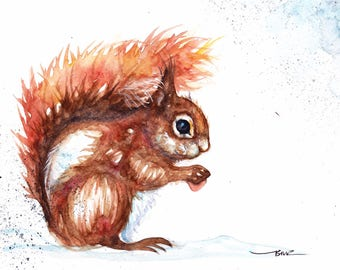 Original Watercolour Red Squirrel Print by Artist Be Coventry Wildlife Animal Art