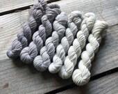 ELEPHANT 240 yard mini-skein set, LIMITED EDITION, superwash, merino, cashmere, nylon, sportweight, sock yarn, gradient, ombre