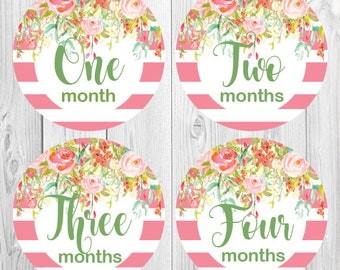 Baby Monthly Stickers, Floral Pink Stripes Month Stickers for Baby, Milestone Flower stickers