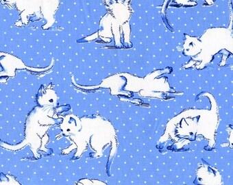 Kitten Play Blue Michael Miller 100% Cotton Fabric CX6344 FQ 1/2 Full Metre