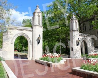 Indiana University Sample Gates: Spring - 8 x 10 Inches