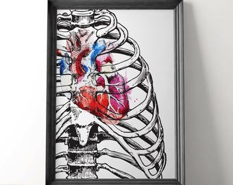 EMT Gifts, Anatomical Heart Art, Anatomical Prints, Anatomical Heart Print, Human Anatomy Science Gift,