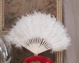 Antique fans made of ostrich feathers