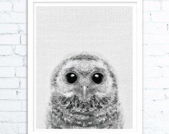 Owl Decor, Owl Print, Woodlands Nursery Wall Art, Printable Poster, Black White and Grey, Animal Photo, Kids Room, Digital Download