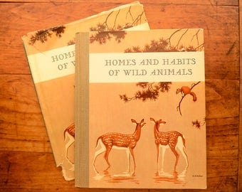 Homes and Habits of Wild Animals by Karl Patterson Schmidt