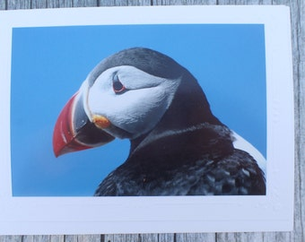 Photo Note Card with Atlantic Puffin