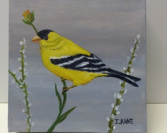 "Goldfinch  Acrylic painting  on canvas. The size is 6"" x 6""  The edge is 1 3/4"" thick. 27.00"
