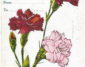 Antique Circa 1915 Christmas Postcard - Red and Pink Carnations