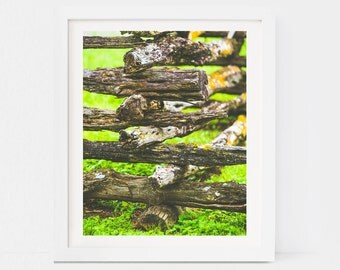 Natural Wood Fence - Fine Art Photography PRINTABLE DIGITAL DOWNLOAD