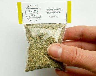Catnip organic dried herbs, 5g, all natural, cats, fun herbs