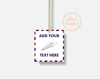 Paper Plane Favor Tags, Airplane Favor Tags, Plane Birthday Printable, INSTANT DOWNLOAD, Airplane Party, Airplane Birthday, Thank You Tags