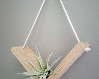 Baby Flying V, Air Plant, Hanging Planter, Wall Art, Geometric Planter, Modern Planter, Wood Art, Home Decor, Modern Home, Minimalist