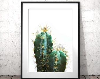 Printable Cactus Art, Cactus Plant, Cactus Photography, Cactus Poster, Plant Art Printable, Cactus Print, Succulent Print, Cactus Printable