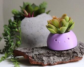 Happy Planter, Succulent Planter, Air Planter Many Colors