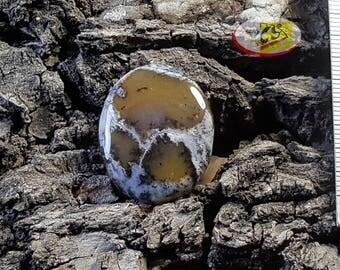CS0173- Dendritic Opal Cabochon