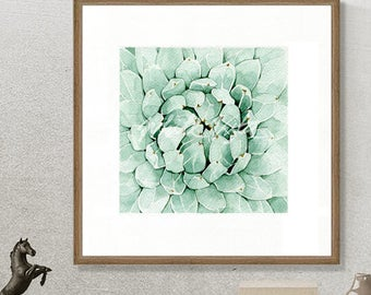 "Succulent Agave (01) water color art botanical art, green leaves painting, painting home decor 16""x 16"" DIGITAL DOWNLOAD"