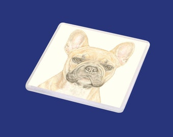 Vinnie the French bulldog Coaster