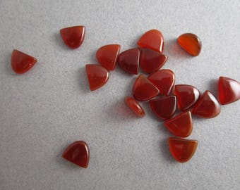 Carnelian Arch Cabochons / Carnelian Tongue Cabs / Lot of 19 Cabs