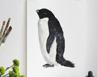 Adelie Penguin Print