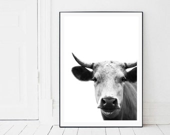 Cow Print, Cow Wall Art, Black and White, Modern photo, Animal Photography, Printable Art, Cow Decor, rustic decor, farmhouse decor, farm