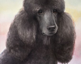 Custom Watercolor Pet portrait poodle handmade High Quality Realistic painting from your photographs  Wall Art gift for animal dog cat lover