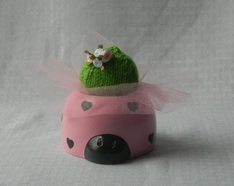 Ladybug Cactus