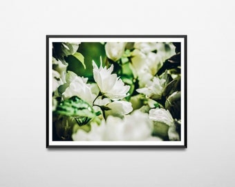 Flower Print, Botanical Print, greenery, Printable Wall art, Minimalist Photos, flower photography, Digital download, Floral decor