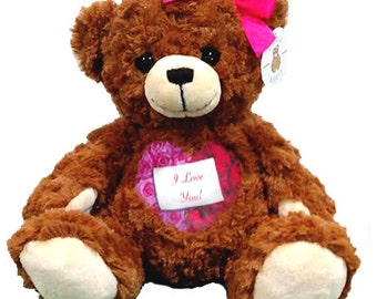 Custom Valentine's Teddy Bear - Voice Bear - Recordable Bear - Personalized Plush Bear - Teddy Bear Roses - Deployment Gift for Kids