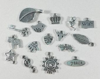 Assorted Charms, Charm Lot, Charm Variety, Tibetan Silver Charms, Pewter Charms, Key Charm, Crown Charm, Feather Charm, Bird Charm