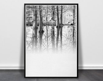 Reflection Print, Forest Wall Art, Winter Tree Art, Tree Printable Photo, Scandinavian Print, Modern Forest Print, Black White Nature Photo