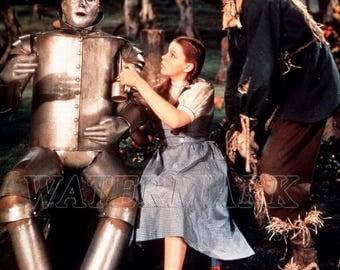 Wizard of Oz - Judy Garland - Wizard of Oz Poster - Wall Art - Movie Print - Movie Art - Movie Lover - 8x10 - 11x14 - 16x20 (JS1298)