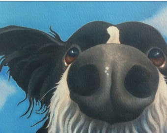 Jellybean the border collie painting