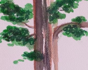 Cedar tree watercolor