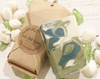SPA DAY soap, seaweed, exfoliator, handmade, cleanser, detoxifying, nourishing, healthier skin, spa treatment