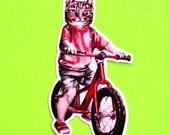 Cat on a Bicycle Kitten Riding a Bike Red Cute Kawaii Weird Anthropomorphic Goodness Pink Skull Waterproof Vinyl Sticker