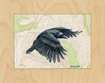 Flying Crow art on topography map, Archival print, wildlife illustration, bird print, wall art, crow illustration, vintage style painting