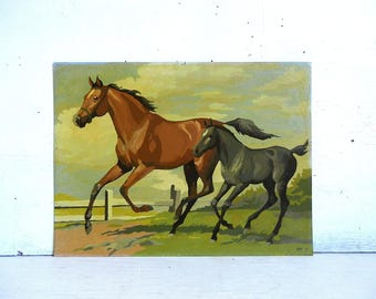 Paint By Number Horse Colt | Horse Paint By Number | PBN Paint By Number Painting Pony
