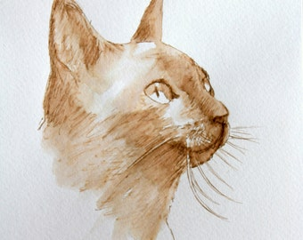 siamese cat art ink drawing