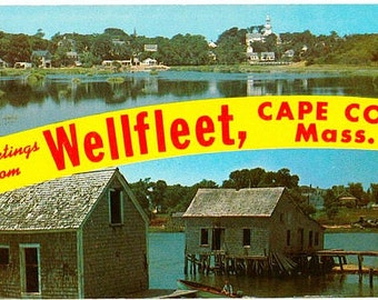 Vintage Cape Cod Postcard - Greetings from Wellfleet (Unused)