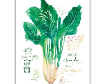 Swiss chard recipe print, Green kitchen decor, Watercolor vegetable painting, Food art, Garden poster, Veggie illustration, Kitchen wall art