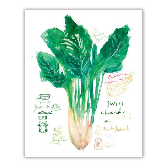 Swiss chard recipe print, Green kitchen decor, Watercolor vegetable painting, Food, Garden poster, Veggie illustration 8X10 Kitchen wall art
