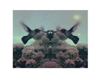 Hummingbird Photography Print, Surreal Nature Bird Art, Summer 11 x 8.5 inch Floral Bohemian Wall Decor