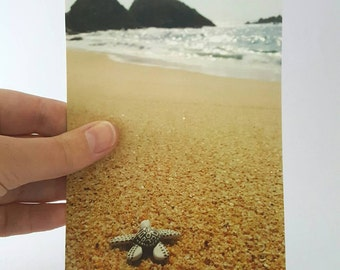 Set of Five Sea Turtle Postcards