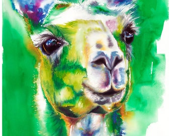 "8x10"" Llama Watercolor Giclee Fine Art Print [Watercolor Llama Print, Llama Print, Llama Art, Green Art, Watercolor Art]"