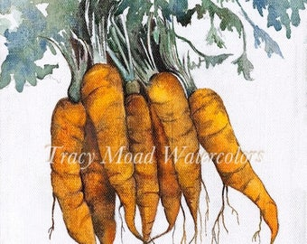 vegetables gardening illustrations kitchen art tracymoadwatercolors