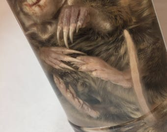 Pocket Gopher Wet Specimen