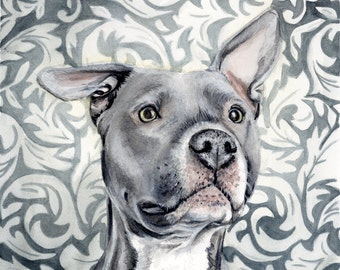Pit Bull Watercolor Painting, Animal Art, Pit Bull Painting, Pit Bull Watercolor, Pit Bull Art, Dog Art, Pit Bull, Pit Bull , Terrier Art