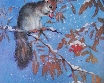 Squirrel - Artist A. Isakov. Vintage Soviet Postcard - 1982. Izobrazitelnoe iskusstvo. Animal, Rowan, Ashberry, Branch, Snow