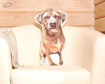 Premium Custom Pet Pillow, Pet Loss Gift, pet memorial,  loss of pet sympathy gift, pet remembrance, custom pet portrait